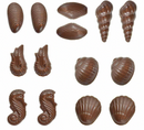 3D Seashells Chocolate Mould - with Recipe Card