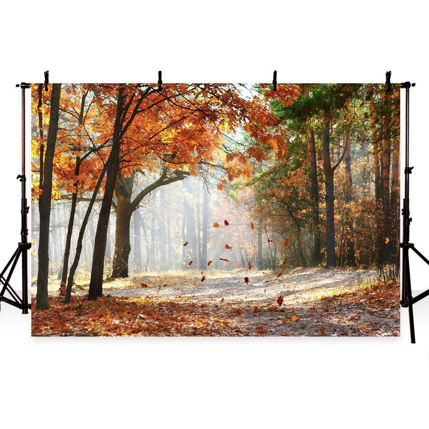 Autumn Scenery Deciduous Backdrop Yellow Fall Leaves for Photography