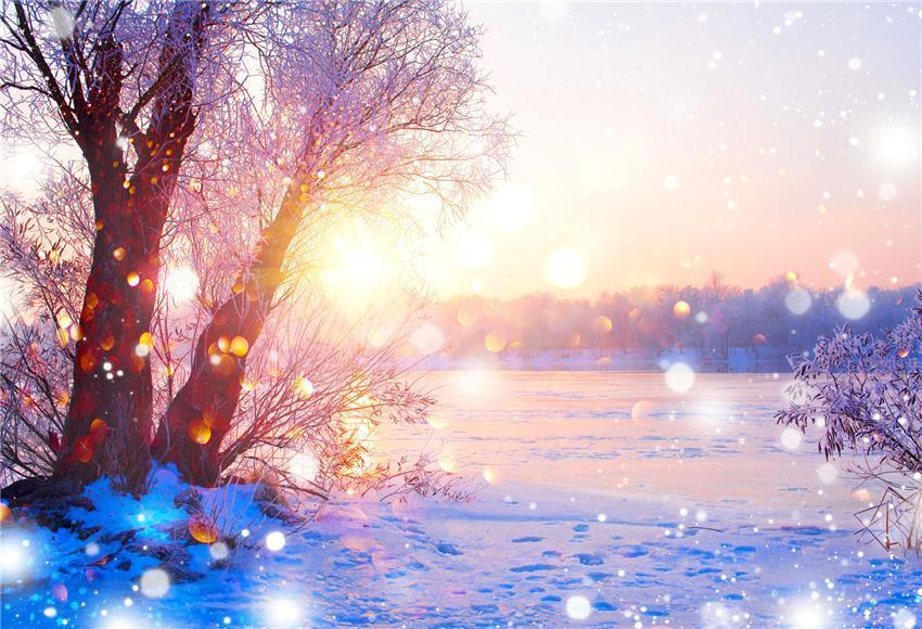 Sunset Winter Nature Photography Backdrop for Studio