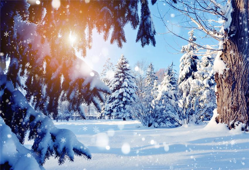 Snow Winter Forest Photography Backdrops for Picture