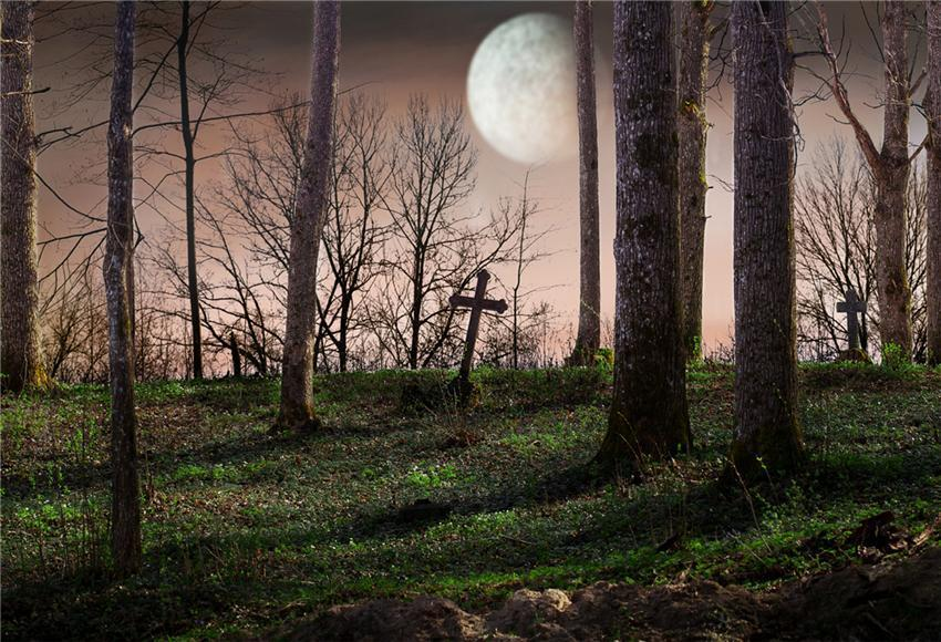 Cemetery Bright Moon Backdrop for Photography Prop