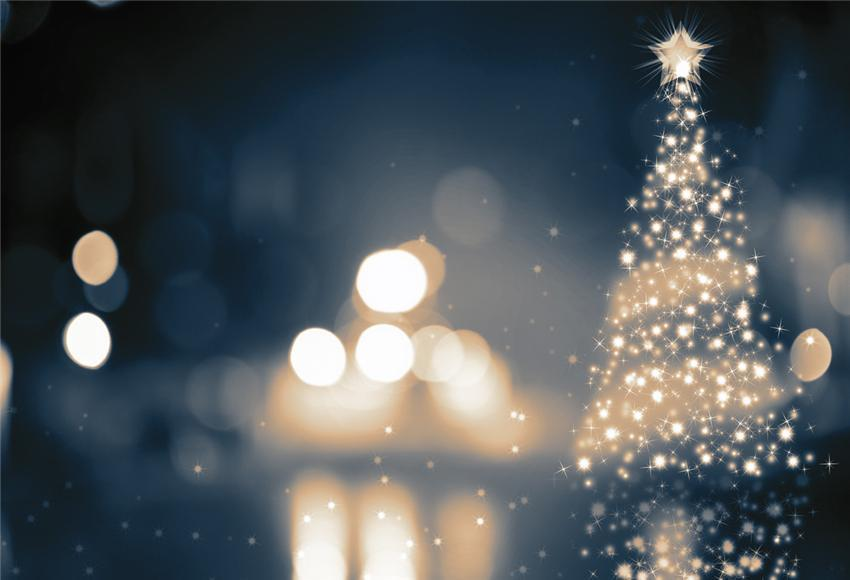 Bokeh Christmas Backdrop for Photography Prop