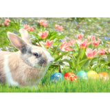 Rabbit and Easter Eggs Among the Flowers For Holiday Photograph Backdrop