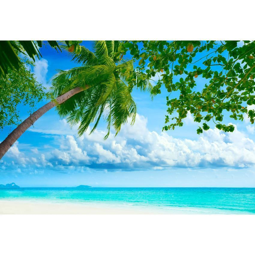 Seaside Blue Sea And Coconut Trees For Summer Holiday Backdrop