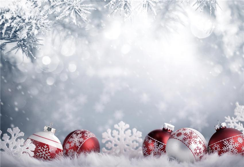 Winter Snow Christmas Backdrop Red Bells Background for Tester