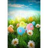 Colorful Easter Eggs Among The Flowers For Holiday Photograph Backdrop