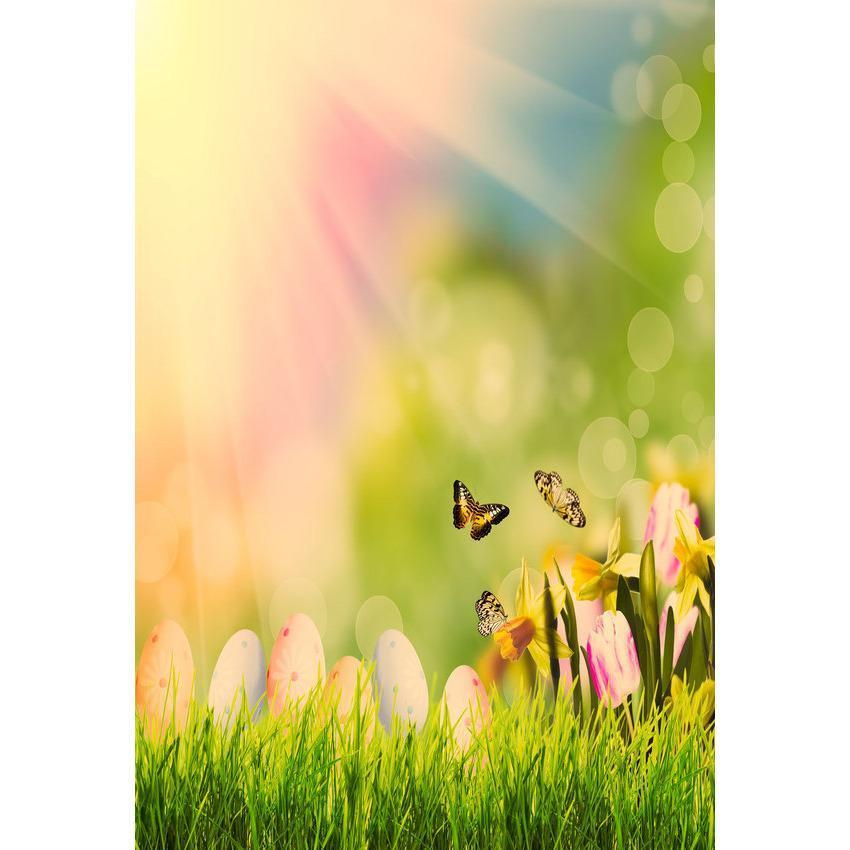 Butterfly And Green Grass In Sunshine Bokeh Backdrop For Photo