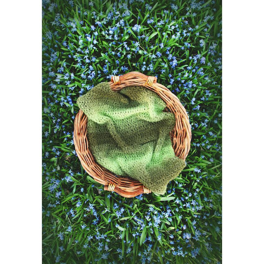 Basket On Green Grass  Backdrop Green Plant Photography Background