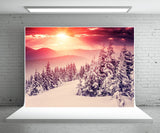 Winter Photography Backdrop Snow Forest Sunlight Background
