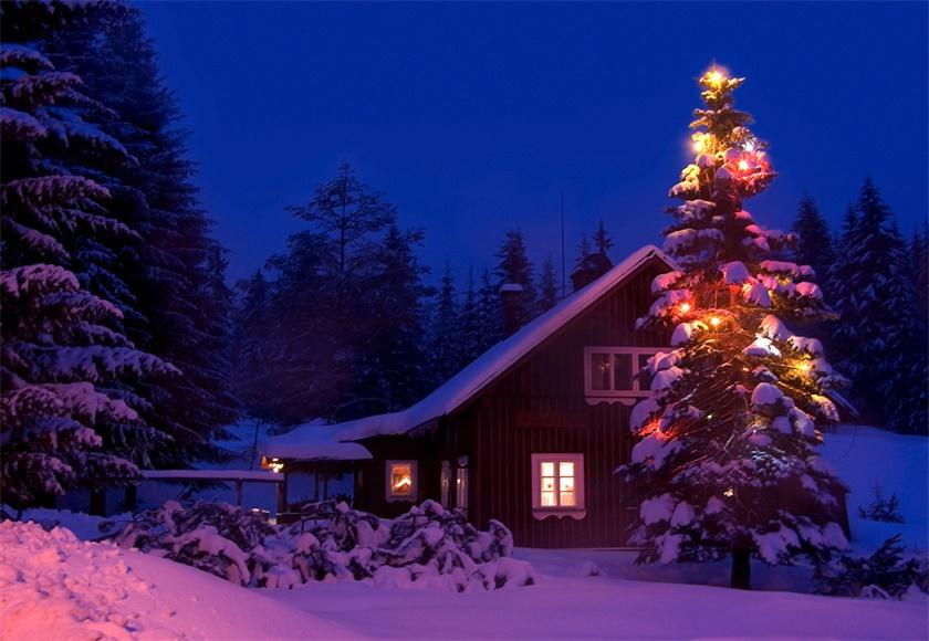 Night Christmas Tree Photography Backdrop Winter Background