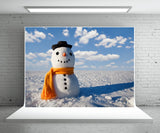 Snowman Photography Backdrop Winter Background