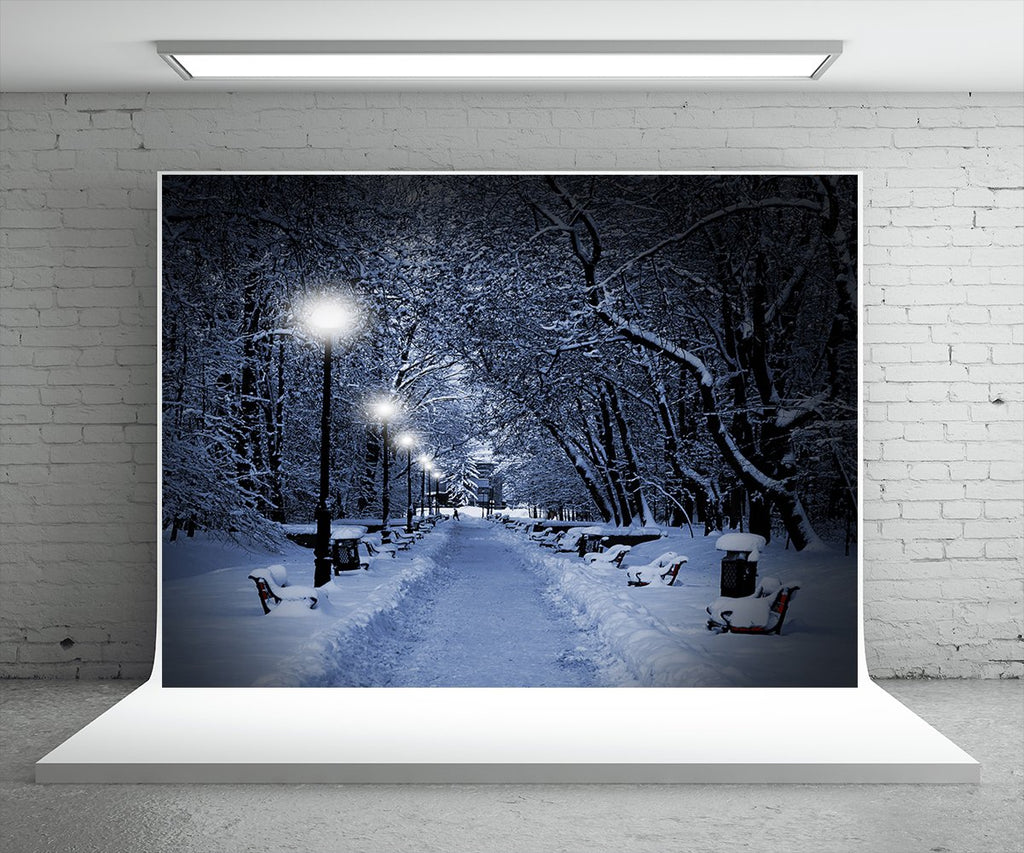 Night Winter Road Photography Backdrop Christmas Background