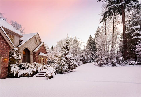 White Snow Houses Photography Backdrop Winter Background