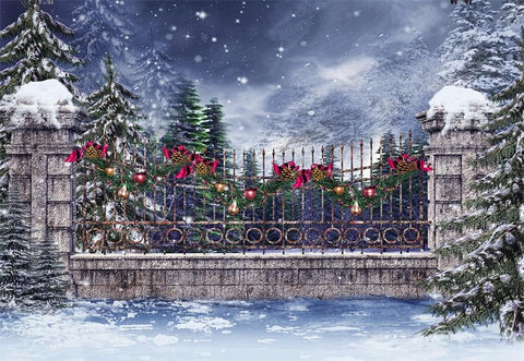 Snow Winter Wonderland Christmas Backdrop for Studio