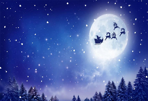Night of Christmas Sky Santa Claus Photography Backdrops