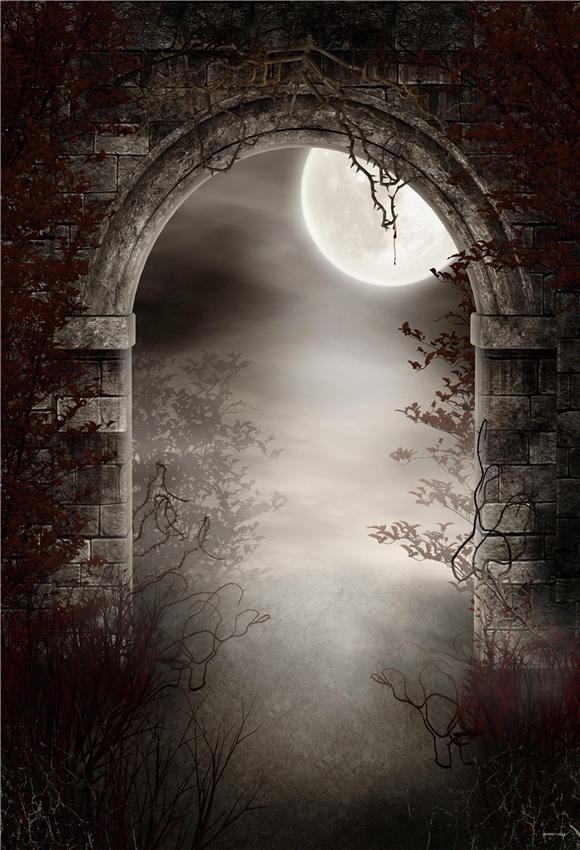 Bright Moon Branches Halloween Photography Backdrops