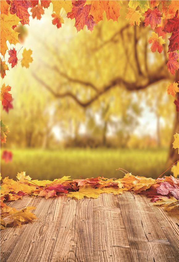 Fall Nature Maple Leaves Wood Photo Studio Backdrop