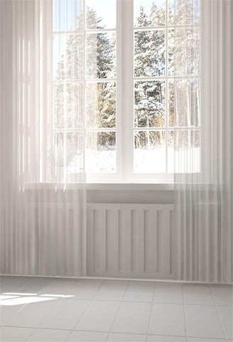 Winter Snow Windows White Cutrain Photo Backdrops