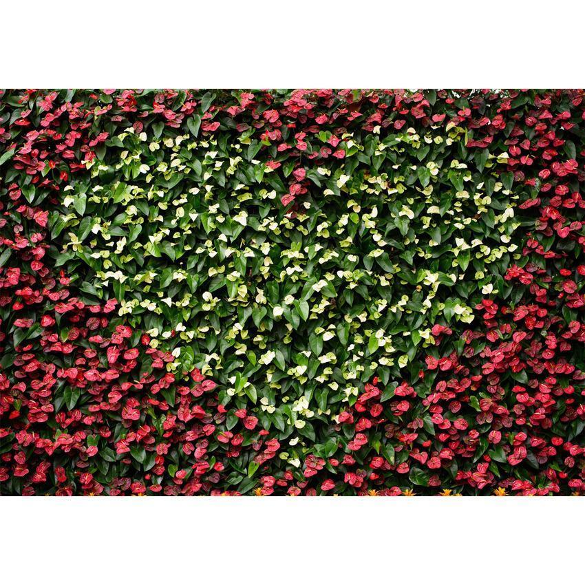Love Heart Flower Wall  Backdrop For Events Photography