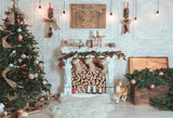White Fireplace Christmas Wood Floor Backdrops