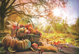 Autumn Pumpkin Photo Backdrops Wood Floor Background for Picture