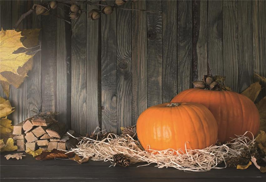 Grey Wood Halloween Fall Pumpkin Straw Photo Backdrop