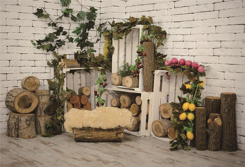Brick Wall Wood Grain Photo Backdrop for Studio