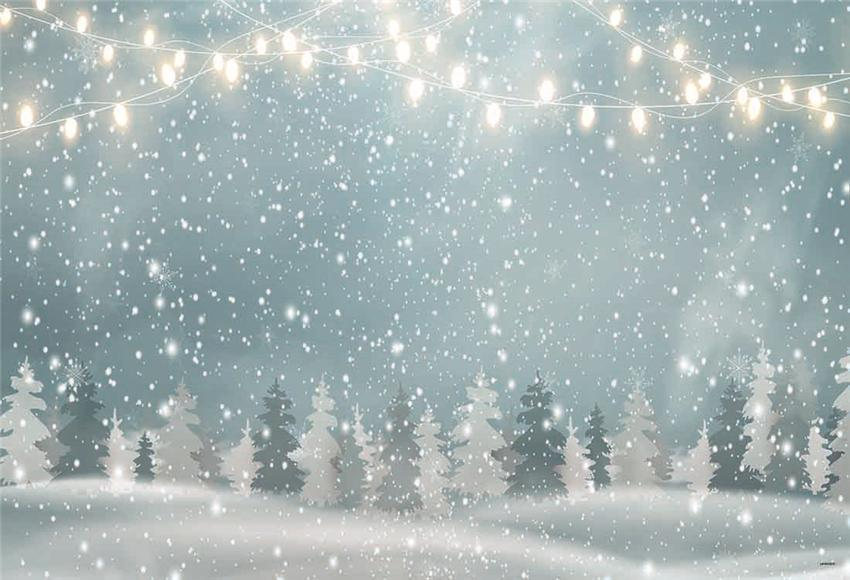 Bright Snow Winter Christmas Backdrop for Studio