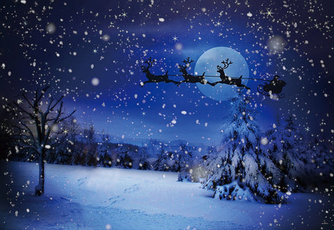 Night of Christmas Santa Claus Winter Snow Backdrops