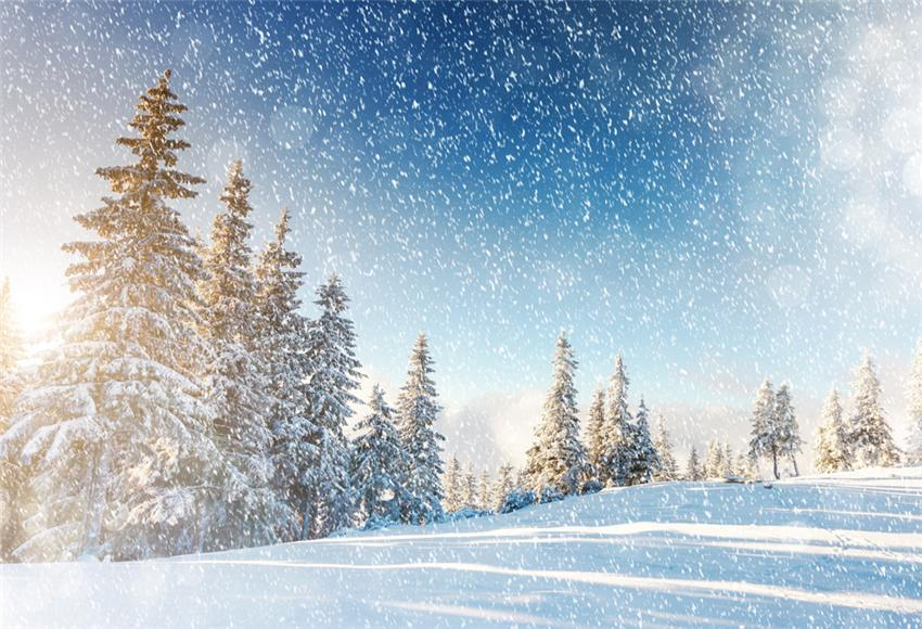 Snowflake Winter Photo Studio Backdrops