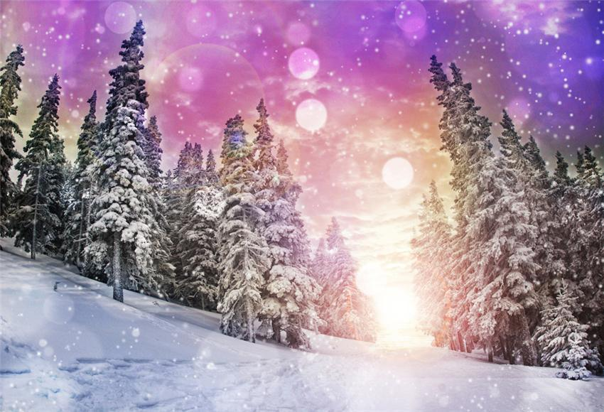 Winter Fabric Sunset Photo Backdrop for Studio