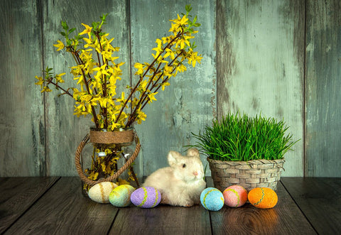 Vintage Wood Wall Rabbit Easter Photography Backdrops