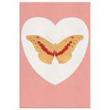 Butterfly Pink by Homeless Penthouse