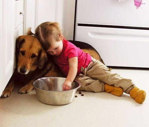 Why does my child eat dog food? - 4aKid Blog