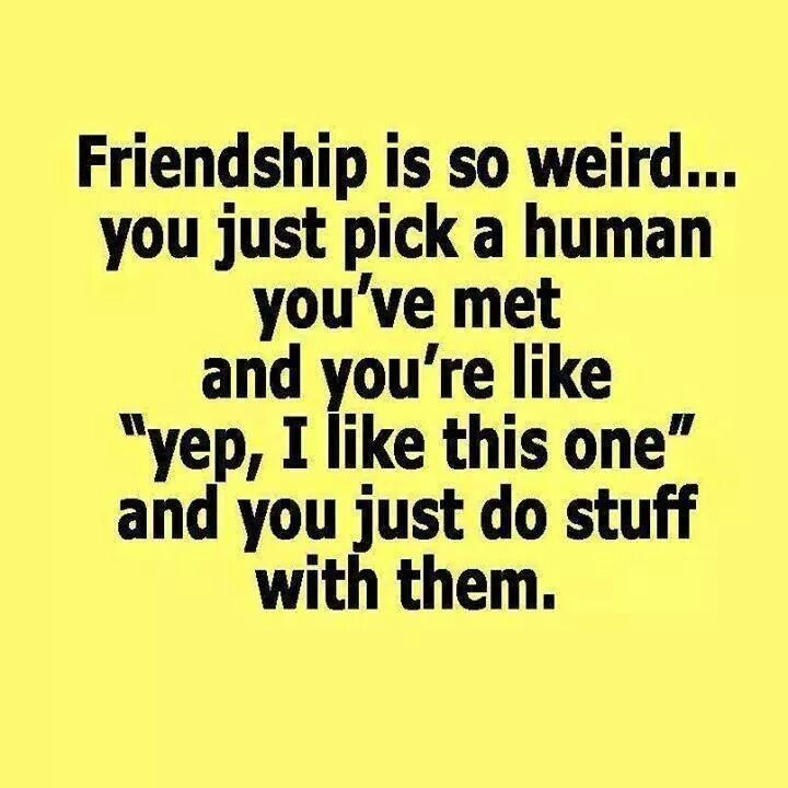 Friendship is so weird... #followusonsocialmedia #clicklike #sharewithyourfriends https://www.instagram.com/p/B_sXDGvF5Ap/