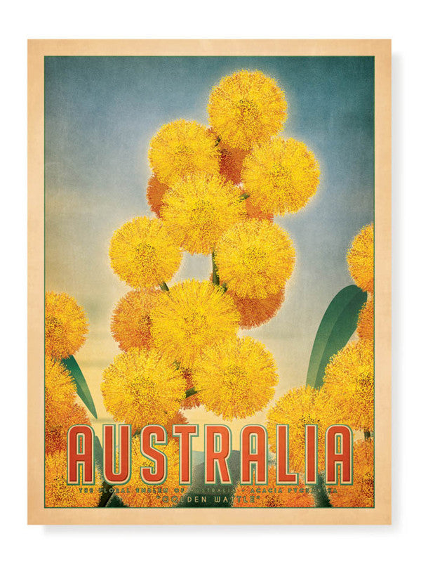 Australia Golden Wattle Print