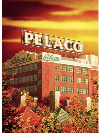 Pelaco Sign Postcard