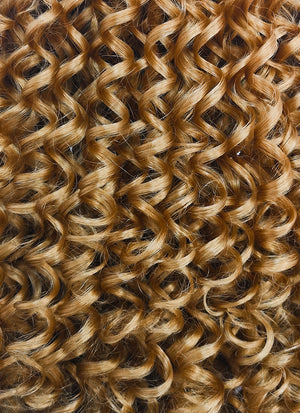 Golden Blonde Curly Lace Front Synthetic Wig LF1701 - Wig Is Fashion Australia