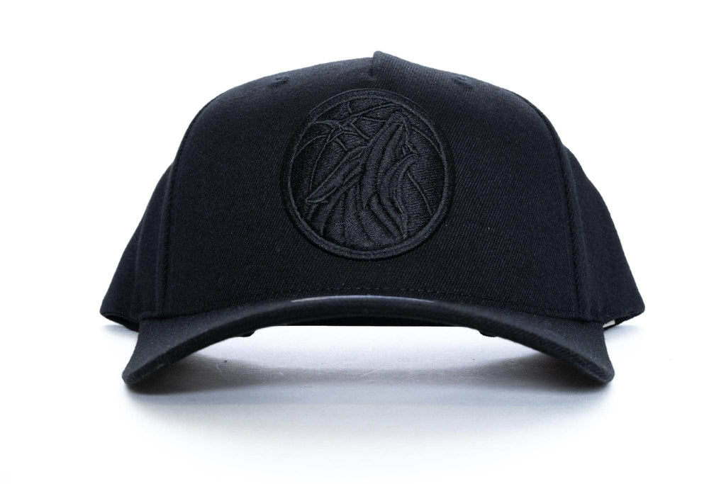 mitchell and ness minnesota timberwolves logo 110 snapback