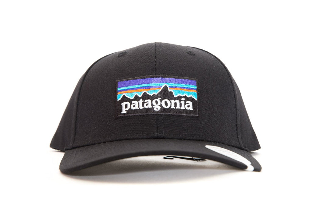 patagonia P-6 logo rodger that hat  1d5b4134b1fa