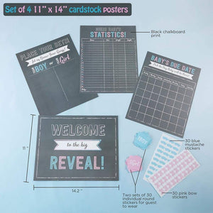Gender Reveal Baby Shower Game Set