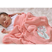 Load image into Gallery viewer, Plush Baby Blanket (Many Designs Available)