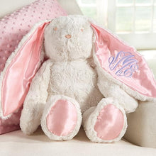 Load image into Gallery viewer, Plush Minky Bunny Available in Pink & Blue (Personalization Available)