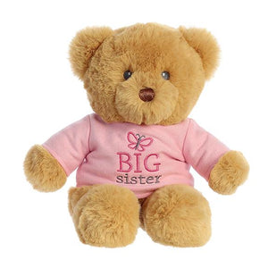 Big Brother or Big Sister Teddy Bear