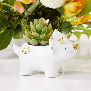 Dinosaur Ceramic Planter