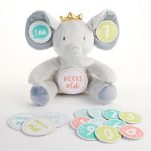 Load image into Gallery viewer, My First Elephant Plush Plus Baby Milestone Markers