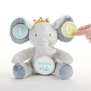 My First Elephant Plush Plus Baby Milestone Markers