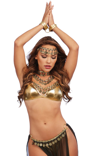 Gypsy-Themed Gold Lamé Bralette and Skirt Bedroom Costume