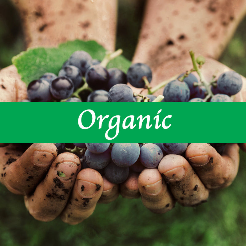 What makes wine Organic?