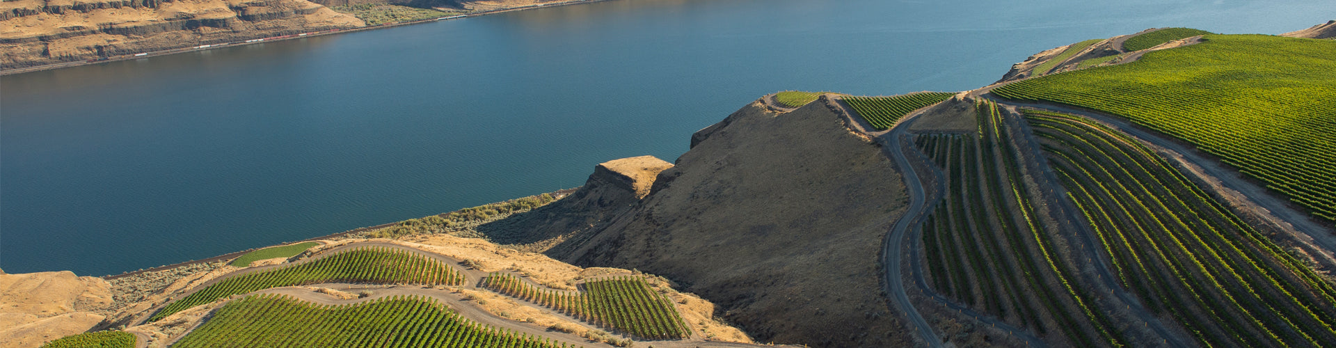 Arial shot of Horse Heaven Hills Benches Vineyard Washington State